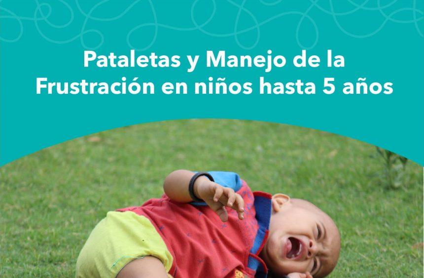 VIÑA DEL MAR: Pataletas y manejo de la frustración en niños de hasta 5 años